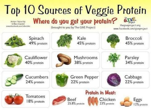 Top Ten Sources of Veggie Protein